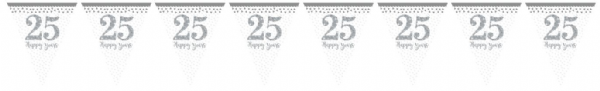 Sparkling Silver Anniversary Pennant Bunting
